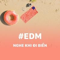 Những Bài Hát EDM Nghe Khi Đi Biển