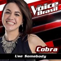 Use Somebody - Cobra