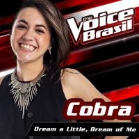 Dream A Little Dream Of Me - Cobra