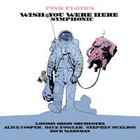Pink Floyd's Wish You Were Her - Alice Cooper