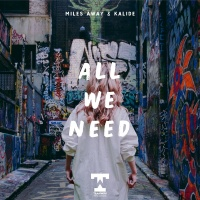 All We Need - Miles Away