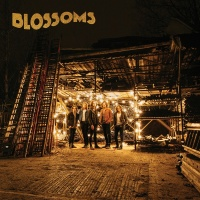 My Favourite Room - Blossoms