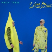 I Love You (But I Hate Your Fr - Neon Trees