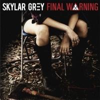 Final Warning - Skylar Grey