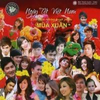 Liên Khúc Xuân - Various Artists