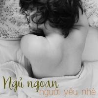 Ngủ Ngoan Người Yêu Nhé - Various Artists
