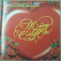 Mừng Tân Hôn - Various Artists