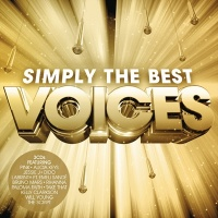 Simply The Best Voices - Various Artists