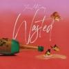 Wasted (Single) - Jesse McCartney