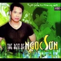 Đôi Ngã Chia Ly - The Best Of Ngọc Sơn - Ngọc Sơn
