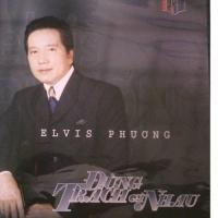 Đừng Trách Gì Nhau - Elvis Phương