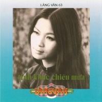 Tình Khúc Chiều Mưa - Various Artists