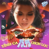 Tình Ca 75 - 95 - Various Artists