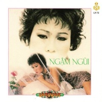 Ngậm Ngùi - Various Artists