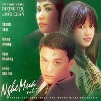 Nghe Mưa - 10 Tình Khúc Dương Thụ & Bảo Chấn - Various Artists 1