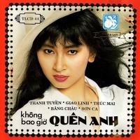 Không Bao Giờ Quên Anh - Various Artists