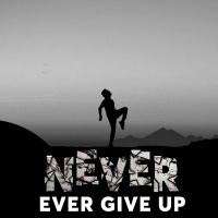 Never Ever Give Up - Various Artists