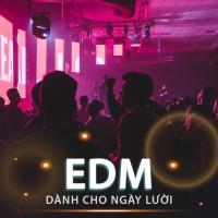 Những Bài Nhạc EDM Dành Cho Ngày Lười