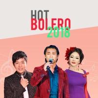 Nhạc Trữ Tình Bolero Được Nghe Nhiều Nhất 2018 - Various Artists