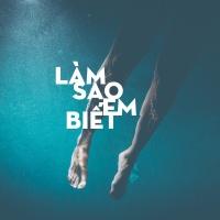 Làm Sao Em Biết - Various Artists