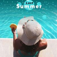 Last Summer - Various Artists