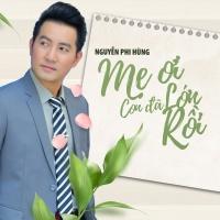 Mẹ Ơi Con Đã Lớn Rồi (Single) - Nguyễn Phi Hùng