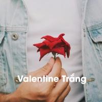 Valentine Trắng - Various Artists