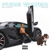 Pure Water (Single) - DJ Mustard, Migos