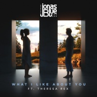 What I Like About You (Single) - Jonas Blue, Theresa Rex