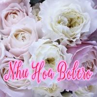 Như Hoa Bolero - Various Artists