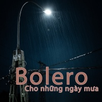 Bolero Cho Những Ngày Mưa - Various Artists