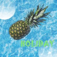 HOLIDAY - Various Artists