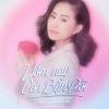 Hôm Nay Con Bận Rồi (Single) - Lương Bích Hữu