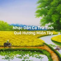 Liên Khúc Nhạc Dân Ca Trữ Tình Quê Hương Miền Tây Hay Nhất - Various Artists