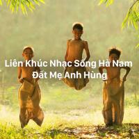 Liên Khúc Nhạc Sống Hà Nam Đất Mẹ Anh Hùng - Various Artists