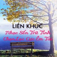 Liên Khúc Nhạc Sến Trữ Tình Chọn Lọc Cực Êm Tai - Various Artists