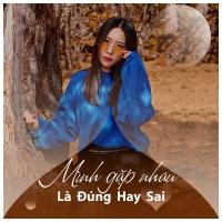 Mình Gặp Nhau Là Đúng Hay Sai - Various Artists