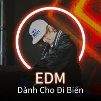 EDM Dành Cho Đi Biển - Various Artists