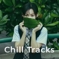Chill Tracks - Various Artists