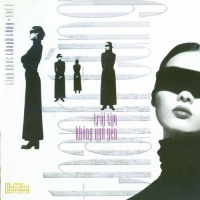 Tình Khúc Thanh Tùng - Trái Tim Không Ngủ Yên (Vol 1) - Various Artists