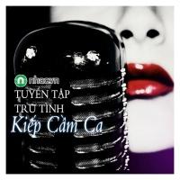 Kiếp Cầm Ca (Tuyển Tập Trữ Tình) - Various Artists