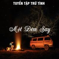 Một Đêm Say (Tuyển Tập Trữ Tình) - Various Artists