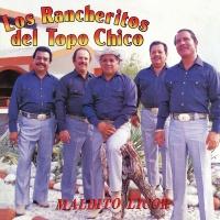Maldito Licor - Los Rancheritos Del Topo Chico