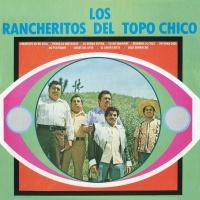 Amorcito De Mi Vida - Los Rancheritos Del Topo Chico