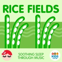 Rice Fields - Soothing Sleep Through Music - ABC Kids