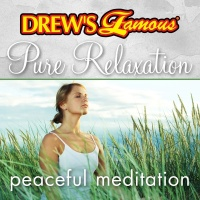 Drew's Famous Pure Relaxation: Peaceful Meditation - The Hit Crew