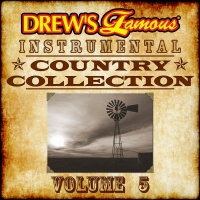 Drew's Famous Instrumental Country Collection, Vol. 5 - The Hit Crew