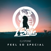 Feel So Special - CJ Stone
