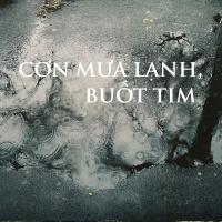CƠN MƯA LẠNH, BUỐT TIM - Various Artists