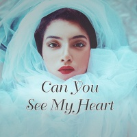 Can You See My Heart - Various Artists